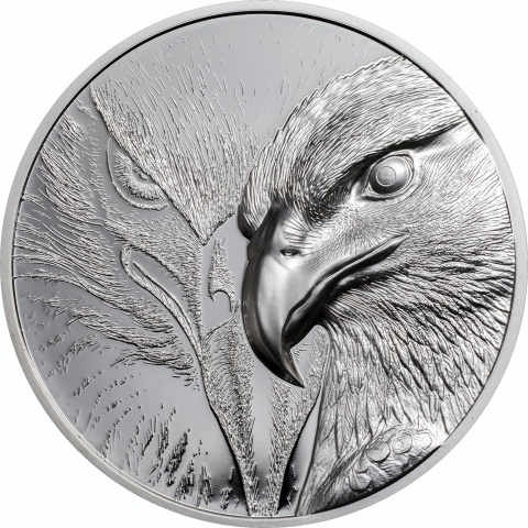 Majestic Eagle Silver 1oz High Relief Double Sides Silver Coin Proof